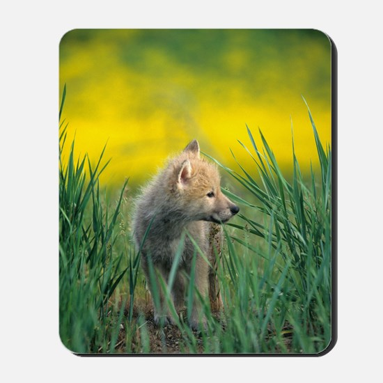 Wolf Pup Mousepad