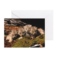 Band Of Brothers Greeting Cards (Pk of 20)