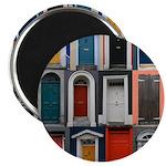 Doors of County Cork Magnet