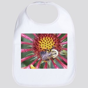 bumble bee bees and flower ph Bib
