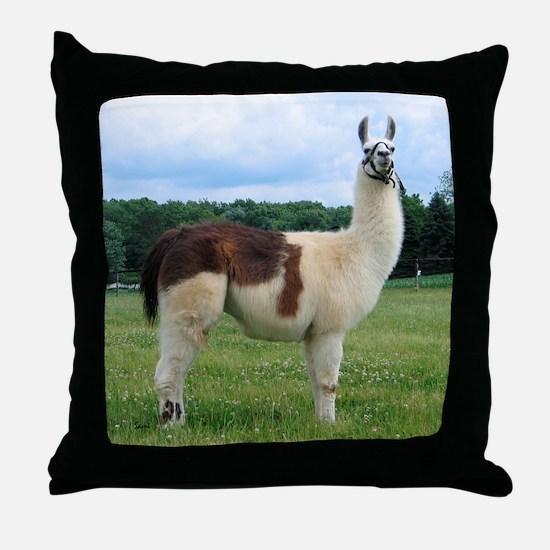 Sunwoods Farms Llama Throw Pillow