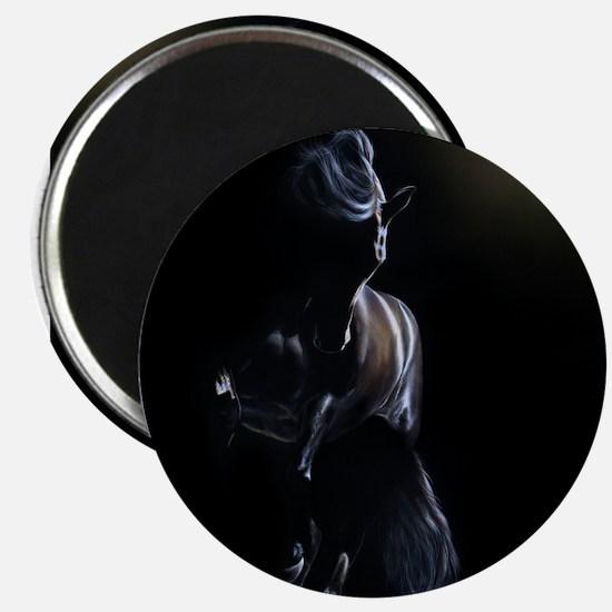 Shadow Play - Friesian Magnet
