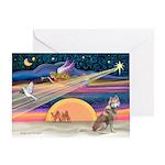 Xmas Star & S Husky (r) Greeting Card