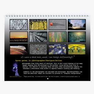 Wall Calendar with 12 different images.