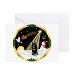 Night Flight/Schipperke Greeting Cards (Pk of 10)