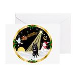 Night Flight/Schipperke Greeting Cards (Pk of 20)