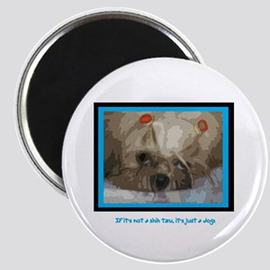 """Shih Tzu Pop Art Cappuccino 2.25"""" Magnet (10 pack)"""