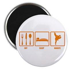 Eat Sleep Karate Magnet