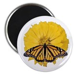 Yellow Zinnia and Monarch butterfly magnet