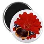 Red Zinnia and Red Admiral Butterfly Magnet