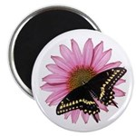Black Swallowtail and Purple Coneflower Magnet