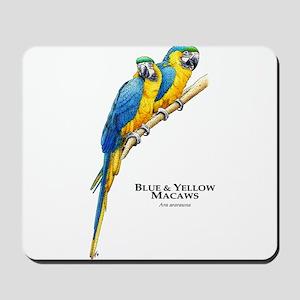 Blue & Yellow Macaws Mousepad