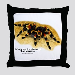 Mexican Red-Kneed Tarantula Throw Pillow