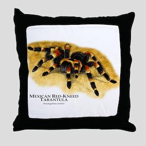 Mexican Red-Kneed Tarantula Throw Pillow