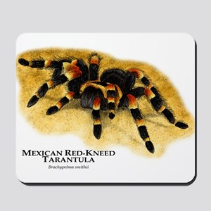 Mexican Red-Kneed Tarantula Mousepad