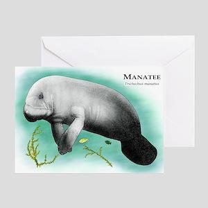Manatee Greeting Card