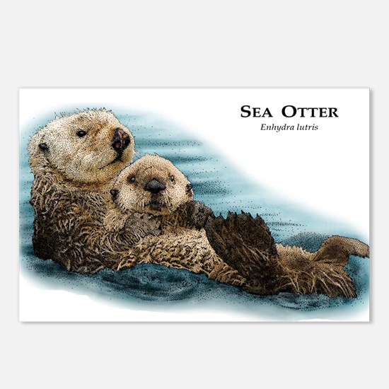 Sea Otter Postcards (Package of 8)