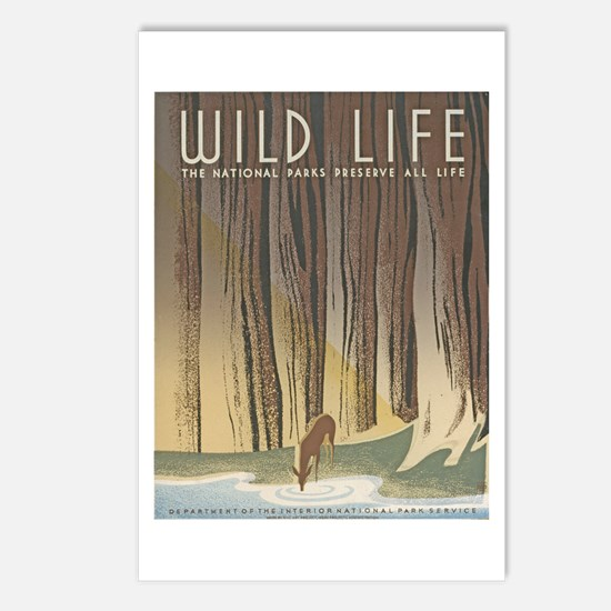 Wild Life Postcards (Package of 8)