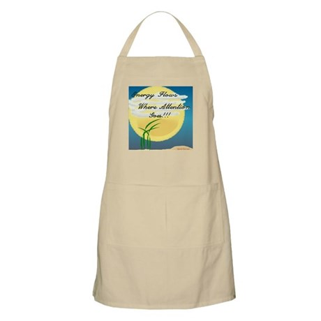 Energy Flows Where Attention BBQ Apron