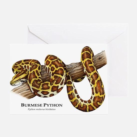 Burmese Python Greeting Card