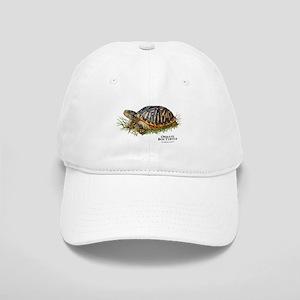 Ornate Box Turtle Cap