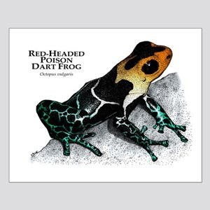 Red-Headed Poison Dart Frog Small Poster