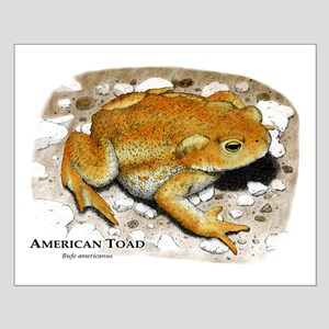 American Toad Small Poster