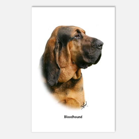 Bloodhound 9Y404D-124 Postcards (Package of 8)