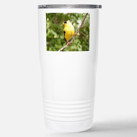 American Goldfinch Stainless Steel Travel Mug