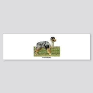 Australian Shepherd 9K7D-20 Sticker (Bumper)