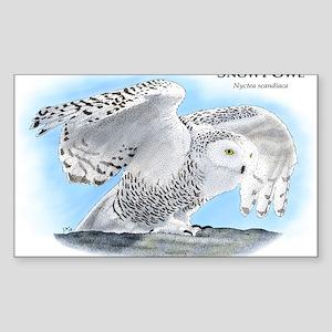Snowy Owl Rectangle Sticker