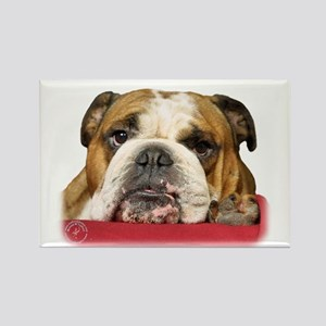 Bulldog 9W099D-039 Rectangle Magnet