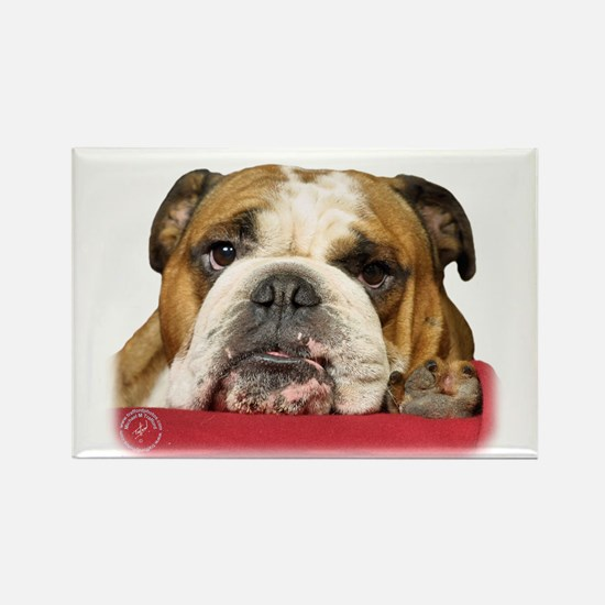 Bulldog 9W099D-039 Rectangle Magnet