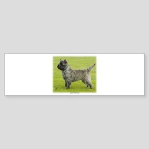 Cairn Terrier 9R071D-129 Sticker (Bumper)