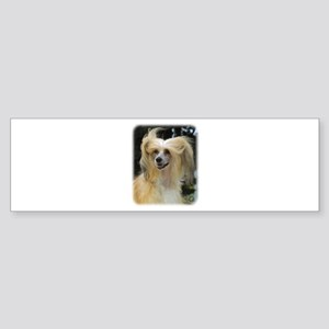 Chinese Crested 9W016D-149 Sticker (Bumper)