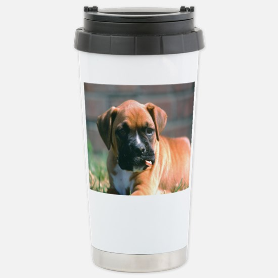 Boxer Pup with Stick Stainless Steel Travel Mug