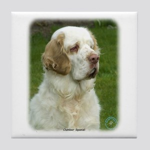 Clumber Spaniel 9Y003D-101 Tile Coaster