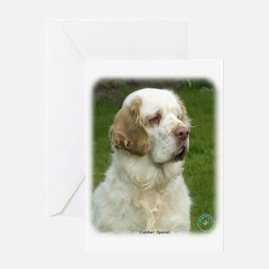Clumber Spaniel 9Y003D-101 Greeting Card