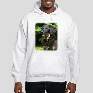 Hovawart 9W009D-107 Hooded Sweatshirt