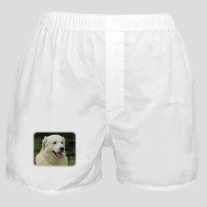 Kuvasz 8W02-17 Boxer Shorts