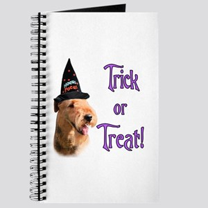 Airedale Trick Journal