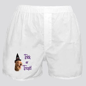 Airedale Trick Boxer Shorts