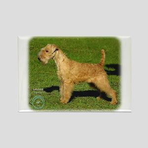 Lakeland Terrier 9P002D-026 Rectangle Magnet