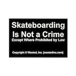Skateboarding Rectangle Magnet