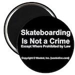 Skateboarding Magnet
