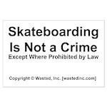 Skateboarding Large Poster