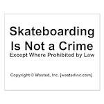 Skateboarding Small Poster