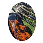 Fire and Chrome Oval Ornament