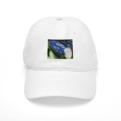 FenderScape Baseball Cap