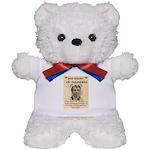 b Saunders Wante Teddy Bear